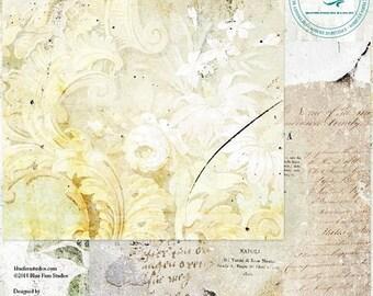 ON SALE Blue Fern Studios Tattered Walls Sunroom 12x12 Scrapbook Paper, 2 pcs