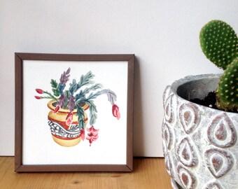 Christmas Cactus Plant Watercolor Print
