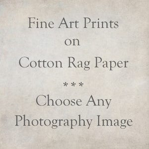 Fine Art Paper Photography Print, Custom Cotton Rag Archival Paper, Farmhouse Decor, Rustic Modern, Country Wall Decor, Custom Option