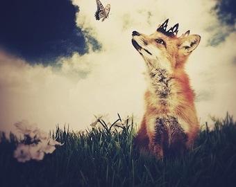 Fox Art Print The Little Fox Prince