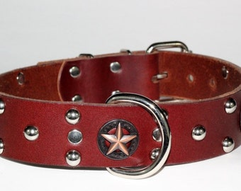 "Western Star Leather Dog Collar, Star Leather Dog Collar, 1.5"" Studded Leather Dog Collar, Studded Leather Dog Collar with Star Conchos"