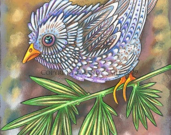 """Beautiful Bird 8 - an 8 x 10"""" ART PRINT of a beautifully fluffy and friendly sky blue bird sitting upon a bright green leaf filled branch"""