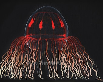 Red Jellyfish - Crossota sp - poster - giclee - print