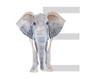 Animal Letter Print - ABC Nursery Art - Alphabet Decor - Letter Wall Art - Name Art - Various Colors - Alphabet Nursery - Letter Nursery