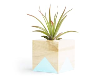 Air Planter, Pastel Blue Planters, Gifts for Him, Geometric Planter, Shelf Decor, Air Plant Display, Small Blue Pot, Modern Decor Plant