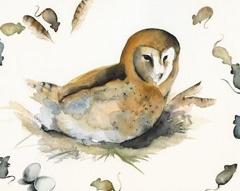 Molly the Barn owl Archival Print