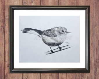 Wren: Wall decor. Signed illustration giclée print-18'x24'