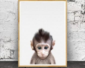 Bébé singe impression, bébé singe Wall Art, imprimés de bébé, Photo de bébé singe, Baby Room Decor, imprimés, pépinière imprimé Animal, Animal