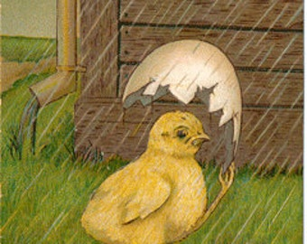 Vintage Postcard, Chick Using Half Egg as Umbrella on a Rainy Day, Easter Greetings