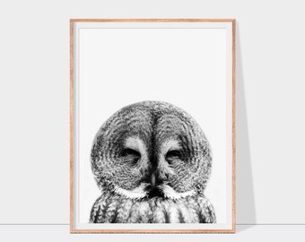 Owl print, owl wall art in black and white, bird print, woodland animal art, bird printable art, downloadable print, nursery wall art decor