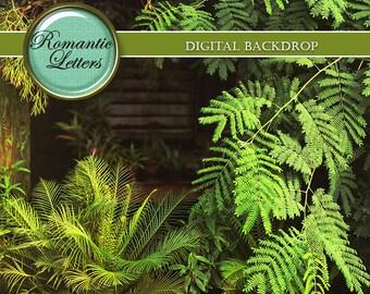 Digital backdrop digital background newborn baby photography newborn photo backdrop digital backdrop fairy green forest photoshop summer