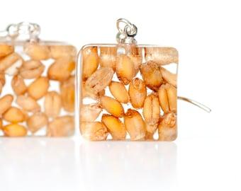 Corn earrings - Wheat seeds earrings - Resin earrings - Food jewelry - Grain earrings - Nature inspired - Botanical jewelry - Farmer gift