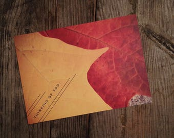 """Fine Art Photo Post Card 6.25x4.5"""" size - Leaf, Landscape, Fine Art Photo, """"Thinking of You"""", Made on Recycled paper, set of 4 cards"""