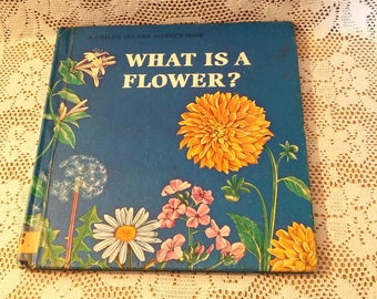 What Is A Flower By Jenifer W. Day Vintage Children's Book