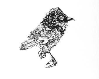 White Throat, Linocut, Hand Printed, Linoprint,  (Cornish wildlife)