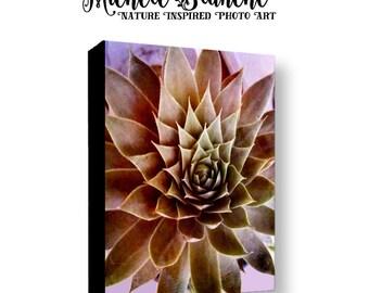 Deep Purples Sedum Photo Canvas,  Succulent Gallery Wrapped Canvas, Sedum Photography Canvas, Botanical Sedum Canvas, Nature Photo Sedum Art
