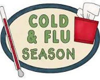 Post-flu Gut Repair Tea