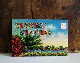 Flowers in Florida Linen Postcard Folder / unused 1940s Souvenir Folder