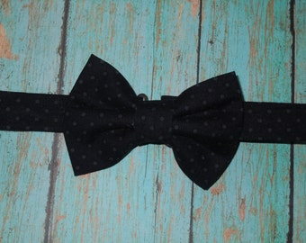 Little Guy Bow Tie, Bow Tie, Pin dot