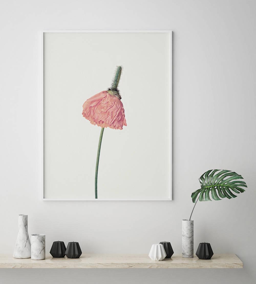 Pink Flower Print Flower Wall Art Scandinavian Print Minimalist
