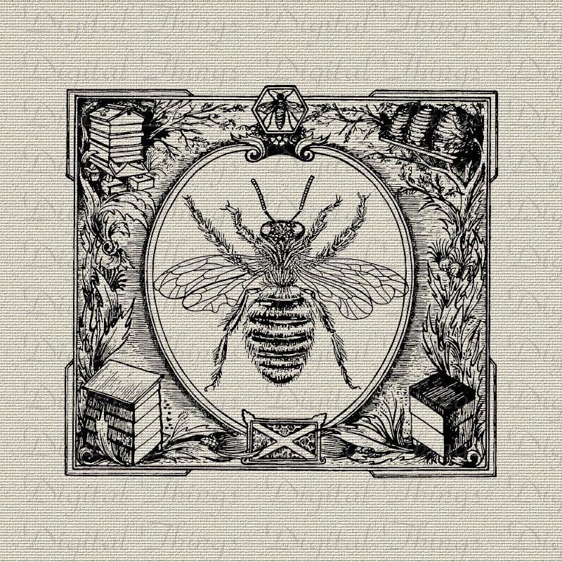 Queen Beehive Bee Hive Bumble Bee Wall Decor Art Printable