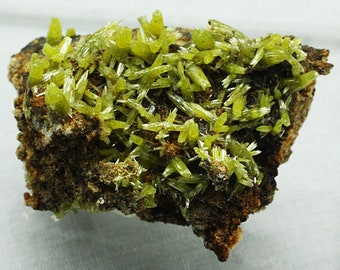 Pyromorphite Crystals, Mexico - Mineral Specimen for Sale