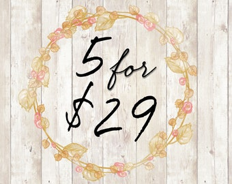 5 Templates for 29 Dollars