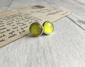Lime earrings statement jewelry gin and tonic lover, fruit earrings, g&t, stud earrings, fruit post earrings, fruit jewellery, gin lover