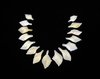 "15 DRILLED .75""-1.5"" Gar Bone Scales Real Taxidermy Genuine Bones beads pendant necklace"
