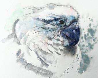 White Parrot Blue Beak - Original Watercolor Painting