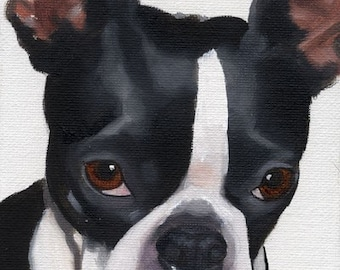 Boston Terrier PRINT from oil painting