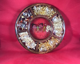 """Egg Tray - Taxidermy Butterfly - 9"""" - Vintage Lucite Tray"""
