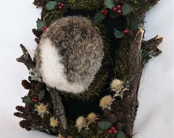 Rabbit Buttocks taxidermy