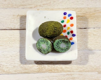 miniature polymer clay Kiwi