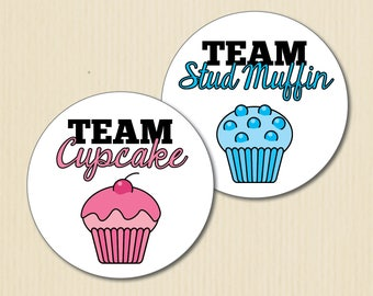 Cupcake or Stud Muffin Gender Reveal Party Stickers, Studmuffin, Team Boy, Team Girl, Baby Shower Stickers, Team Pink Labels, Team Blue
