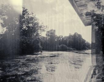 "Original Framed Photograph by Jill Ensley - ""swamp"""