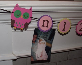 Owl Birthday Picture Banner, 1st Year photo banner, Babys first year birthday banner,  Hayley Wise Owl Collection