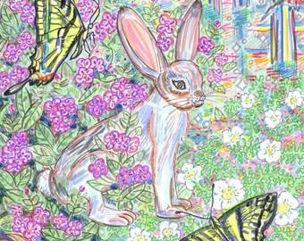 Art Print, Rabbit, Butterflies, Nature, Sage, California, Mushrooms, Magical, Kitkitdizze, Flowers, Twilight, Dawn, Forest, Yellow, Blossoms