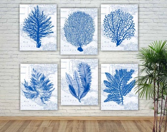 Sea Fan art, Nautical poster, Sea fan posters, nursery art, educational display, bathroom decor, beach cottage decor, coastal art, set of 6
