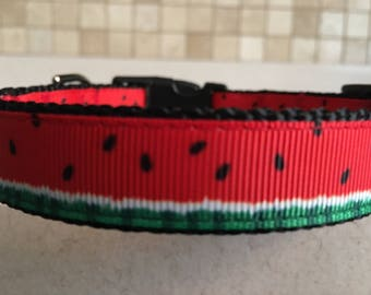 It's the Pits Small and Medium Dog Collar