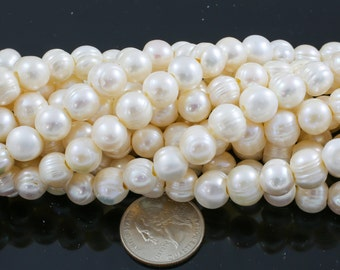 10-11mm Large Hole Freshwater  Pearl, 8 Inch Strand