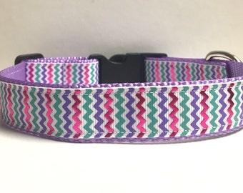 "1"" Purple chevron collar"