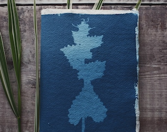 Hand bound and printed notebook: Cyanotype stem