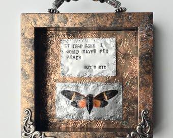 "Inspirational Art, Taxidermy Moth, Mixed Media, Oddity Art, ""Fly Again"", Unique Wall Decor"