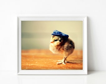 Baby Chicken Wearing A Newsboy Hat Funny Print Nursery Decor Reporter Gift Baby Animals Photograph 8x10 (1) SALE