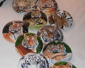 """6 Tiger Buttons, 2.25"""" Tiger Pin Back Button, Tiger Magnet, Mirror, Tiger Favors, Great Tiger Gift, Black Sack Buttons, (1109)"""