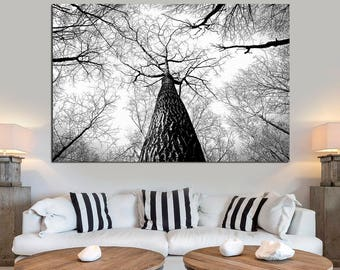 Tree branches with leaves in sunlight, Print on Canvas, Interior design, Room Decoration, Photo gift,  interior design. Wall art, decor.