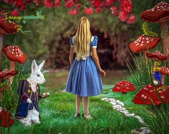 5 jpeg value pack | Digital backgrounds| digital backdrops| Alice | White Rabbit | Alice and White Rabbit  Tea Party  | Alice in Wonderland