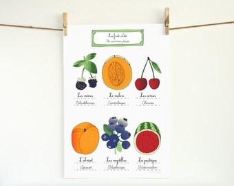 Kitchen Art French Summer Fruits 13x19 kitchen poster of original illustration home decor Food Garden botanical chart
