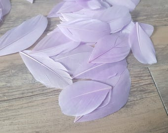 set of 10 Purple Violets feathers 5cm high